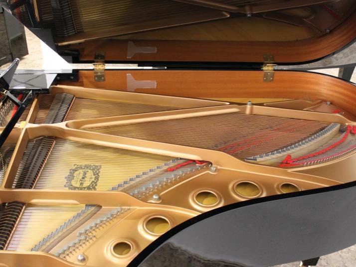 ALQUILER Yamaha C5 o equivalente. 200cm.