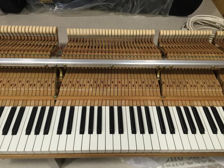 SISTEMA SILENT PIANO DISC QUIETTIME MAGIC STAR PIANO COLA